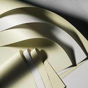 Как из дерева делают бумагу