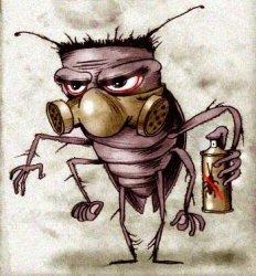 Как избавиться от тараканов в квартире?