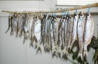 Как вялить рыбу в домашних условиях?